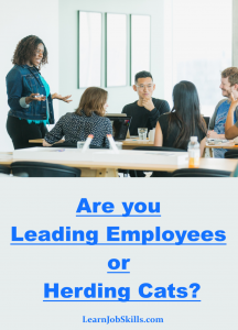 Leading Employees or Herding Cats